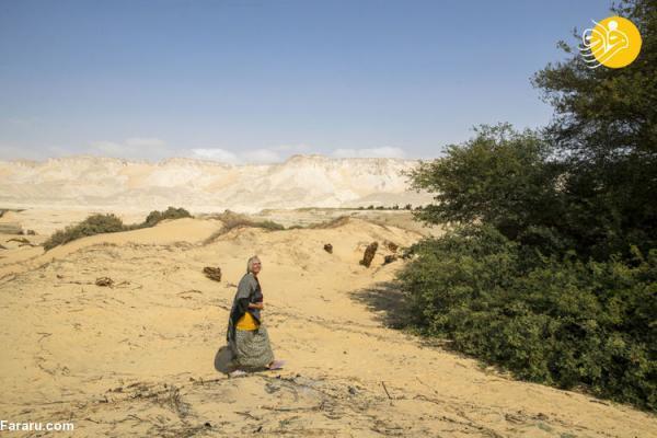(تصاویر) زندگی زن تنهای آلمانی در کویر مصر!